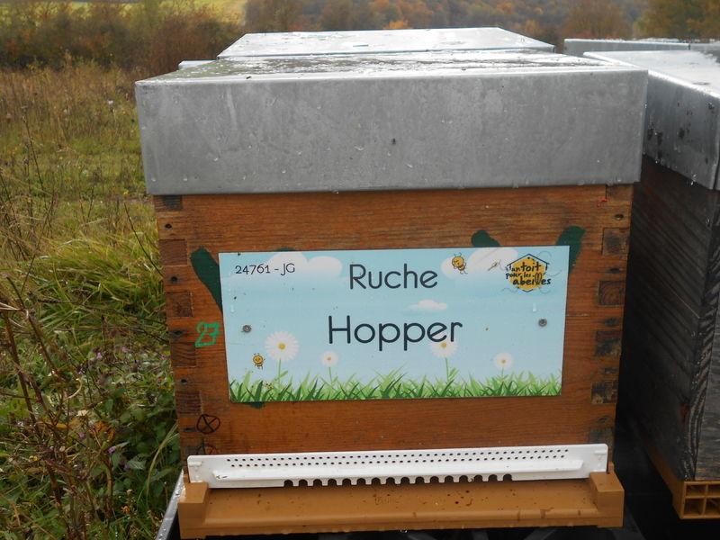 La ruche Hopper