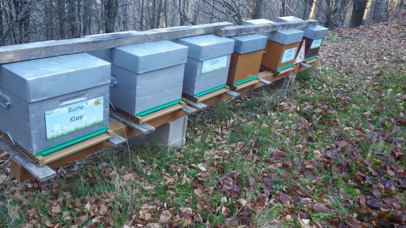 La ruche Klee