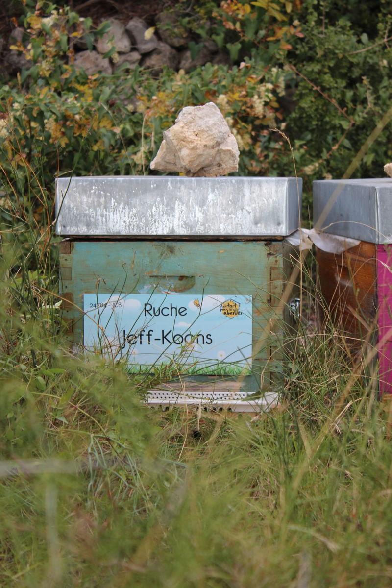 La ruche Jeff-Koons