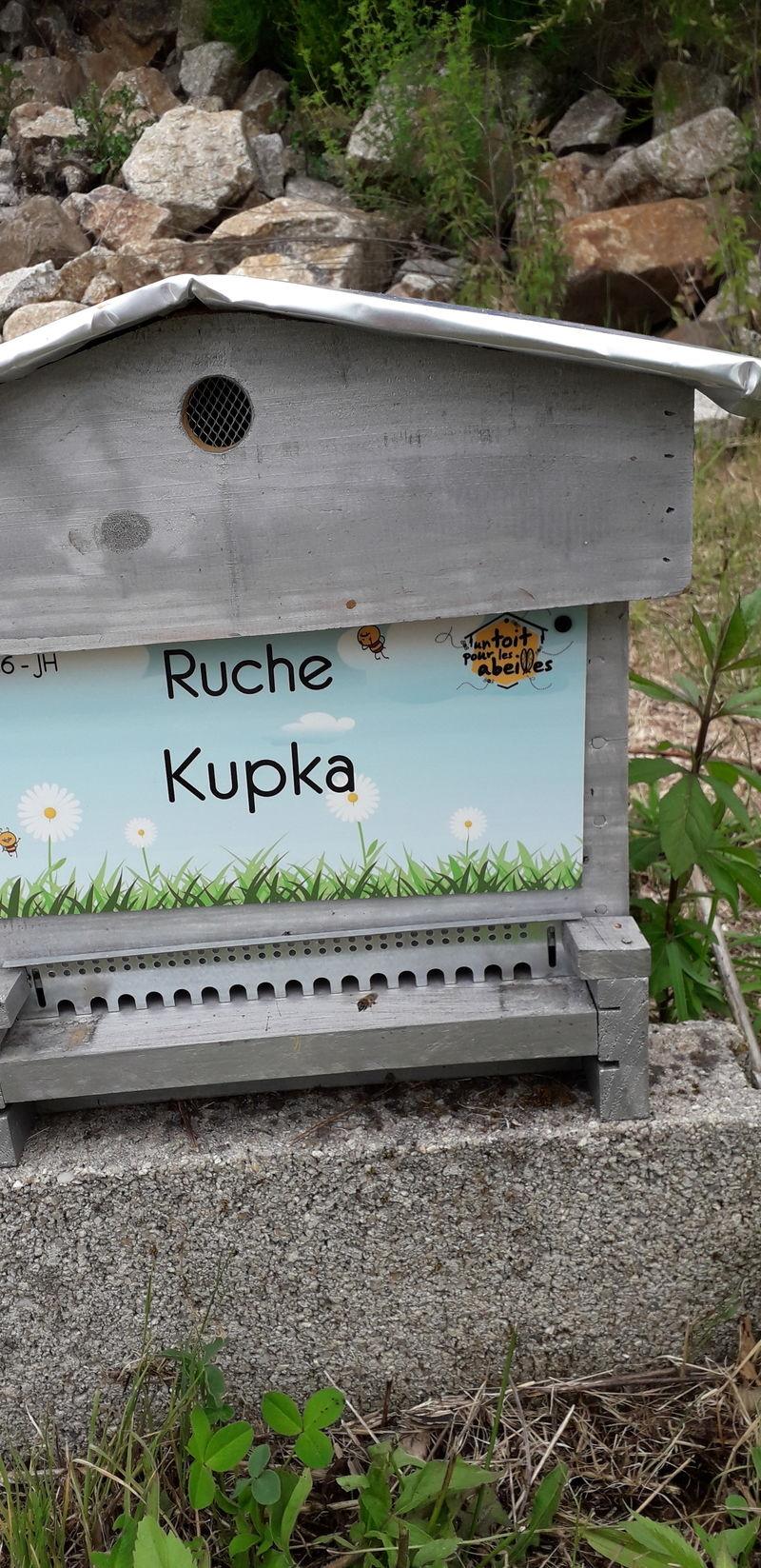 La ruche Kupka