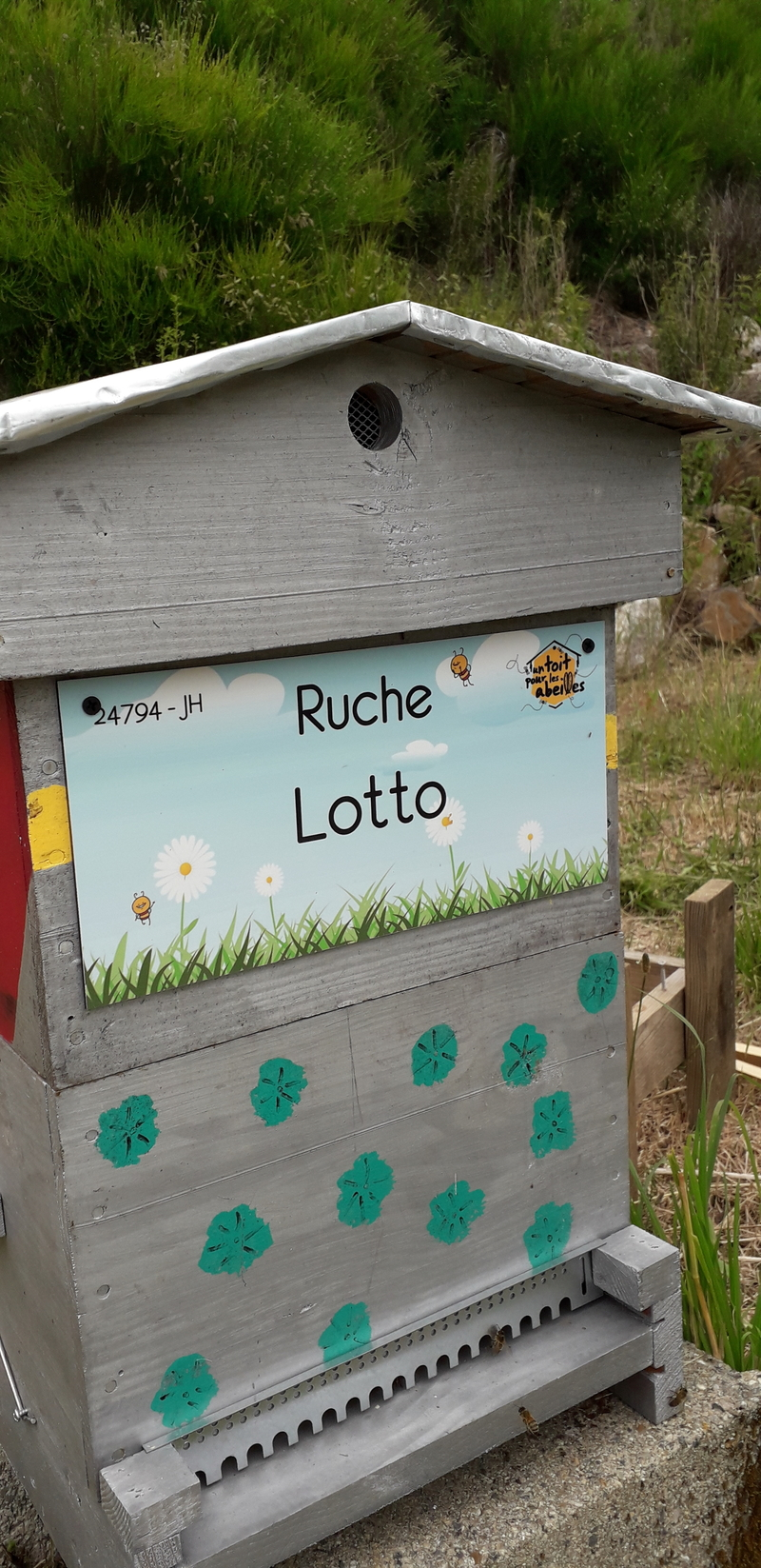 La ruche Lotto