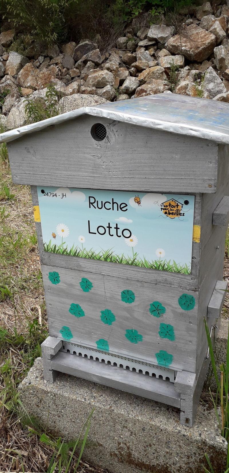 La ruche Lotto