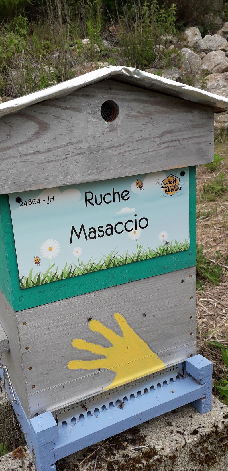 La ruche Masaccio
