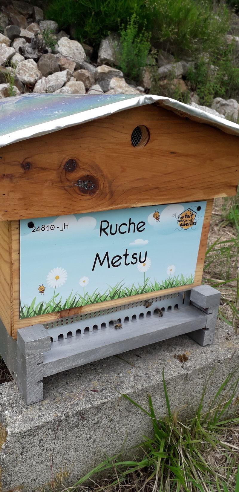 La ruche Metsu