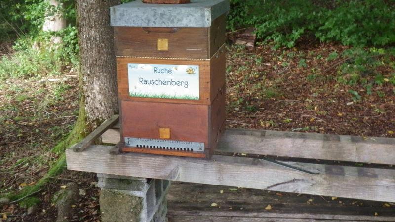 La ruche Rauschenberg