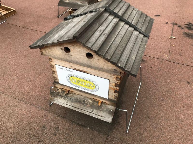 La ruche SENDIN