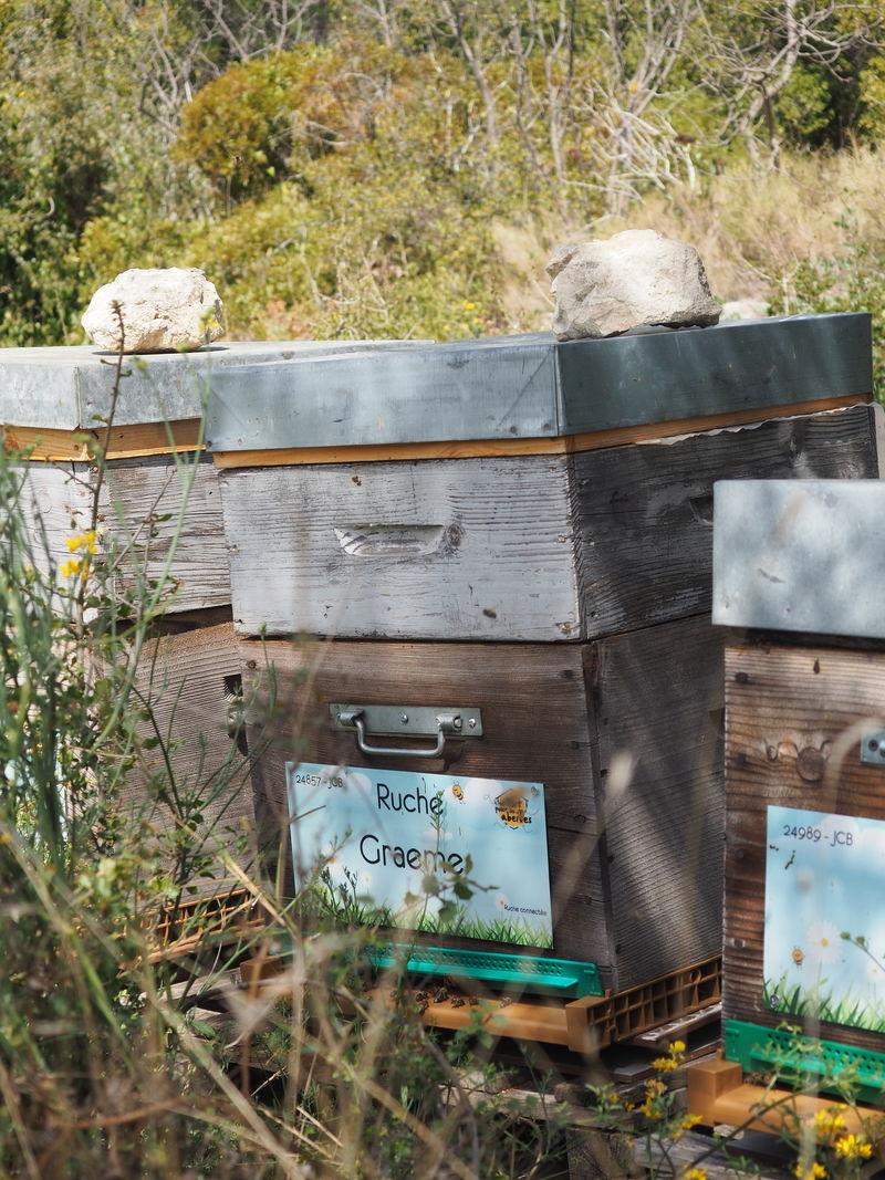 La ruche Graeme