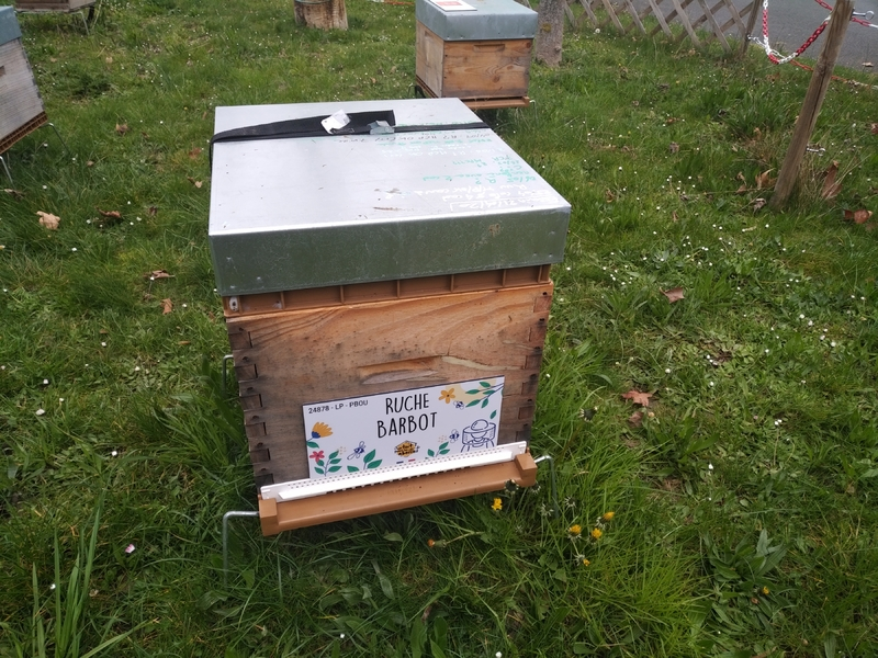 La ruche Barbot