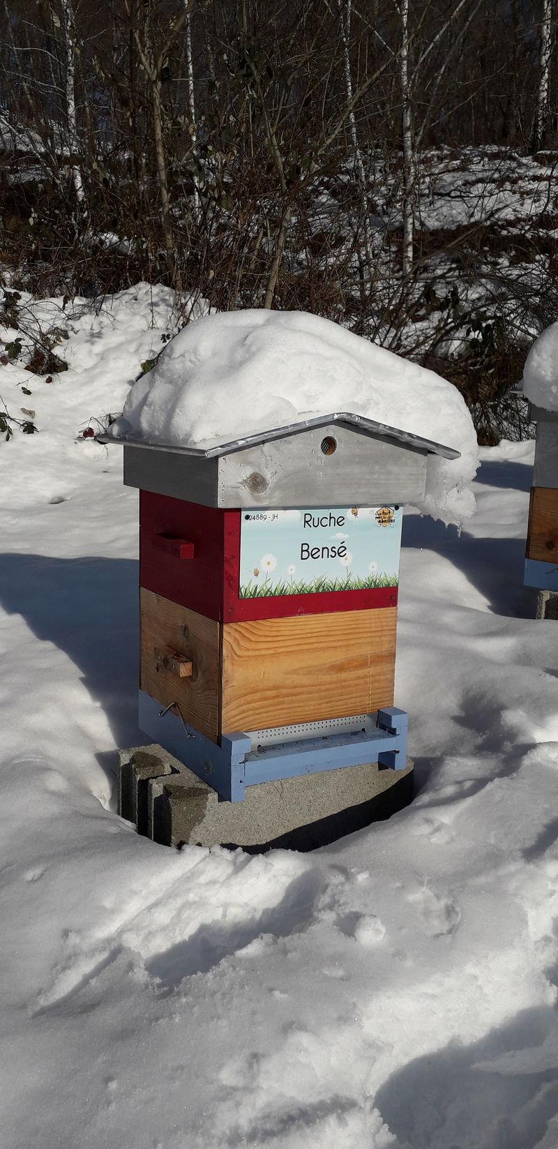 La ruche Bensé