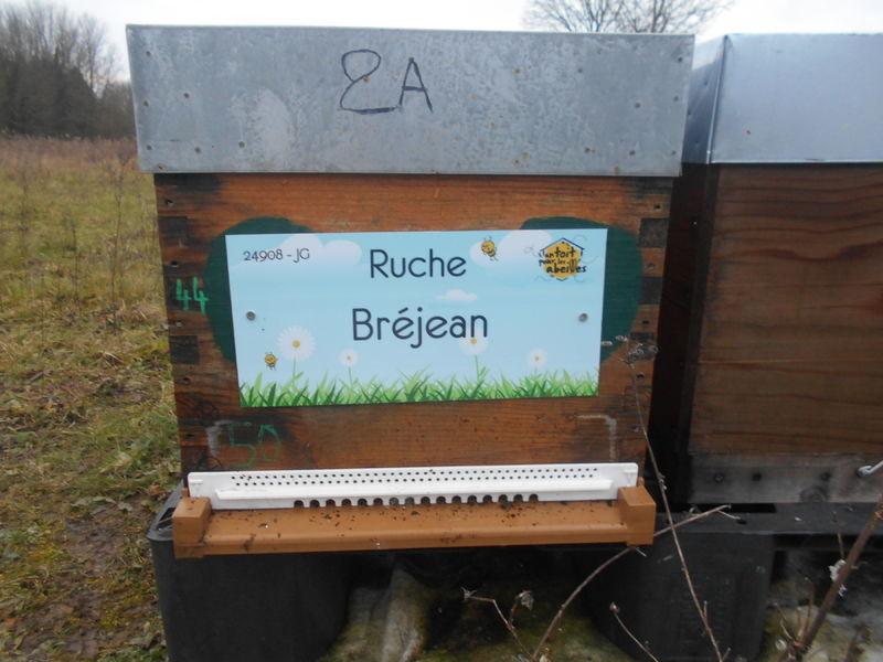 La ruche Bréjean