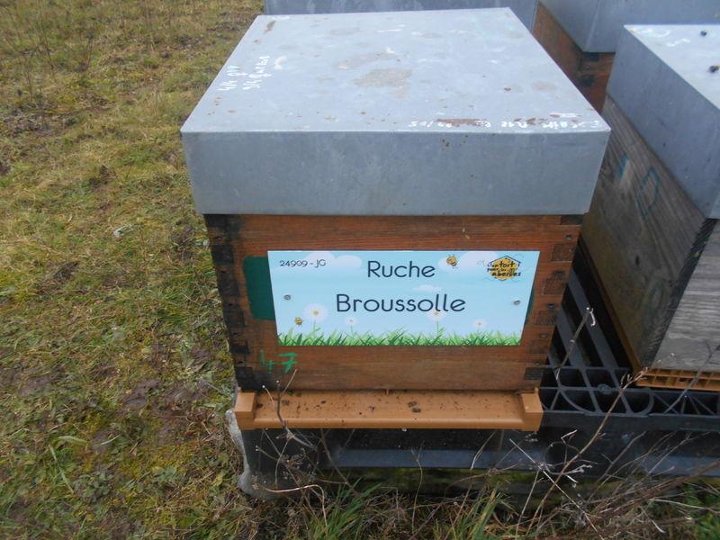 La ruche Broussolle