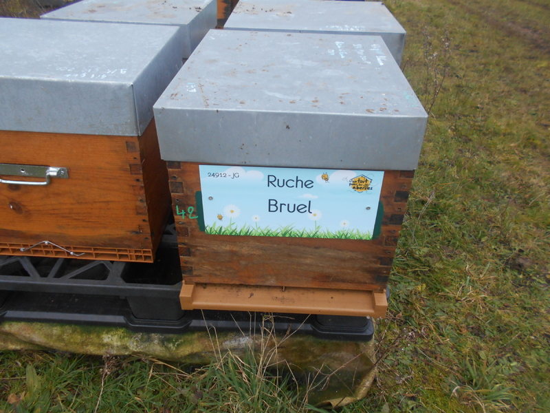 La ruche Bruel