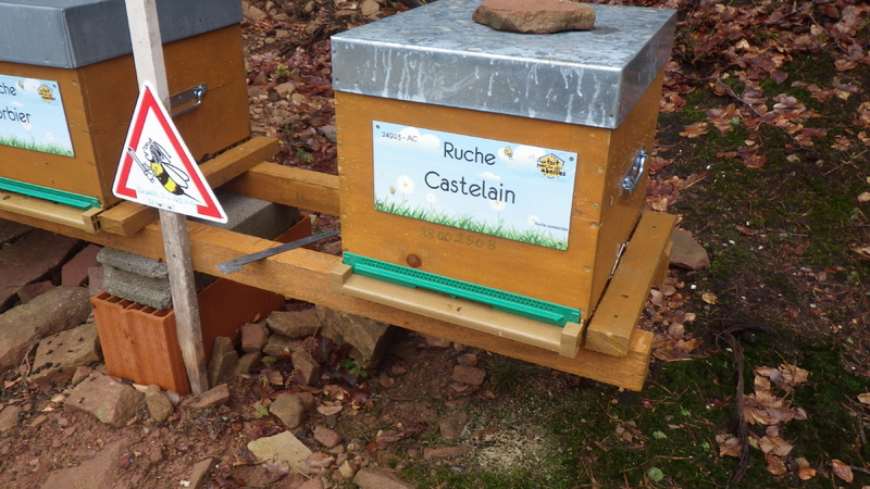 La ruche Castelain