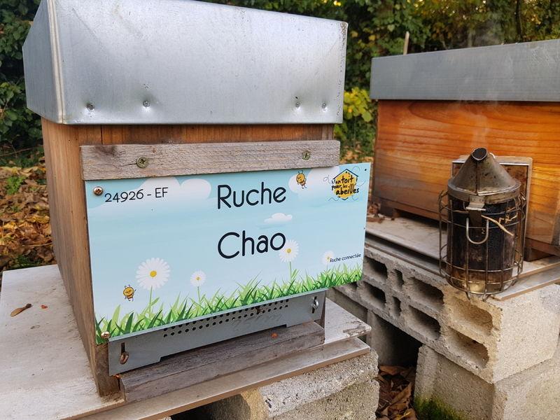 La ruche Chao