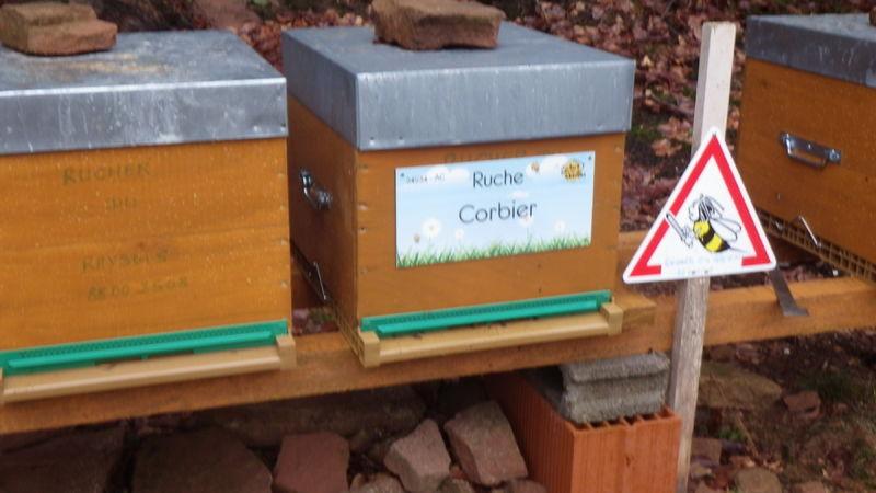 La ruche Corbier