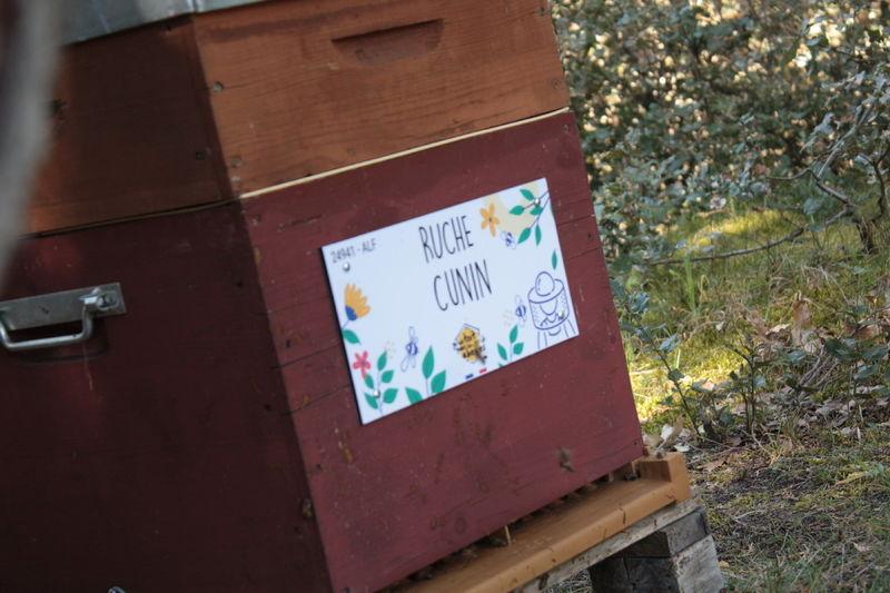La ruche  Cunin