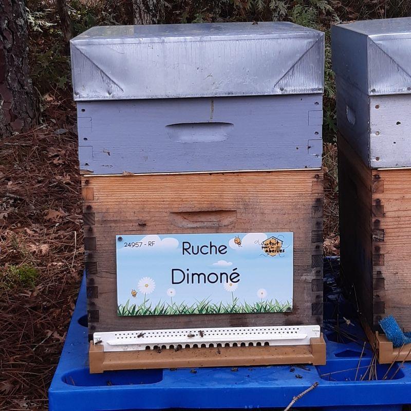 La ruche Dimoné
