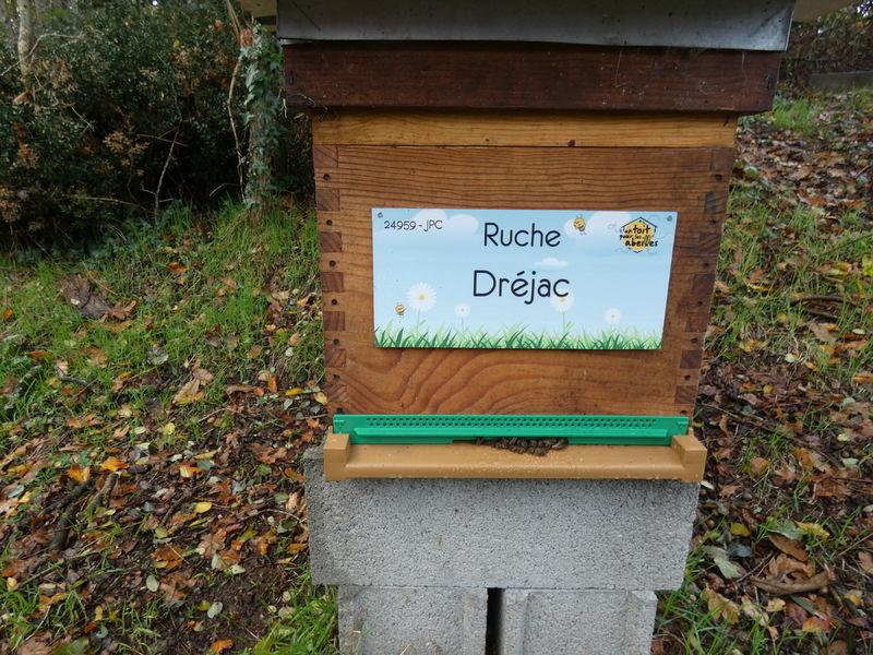 La ruche Dréjac