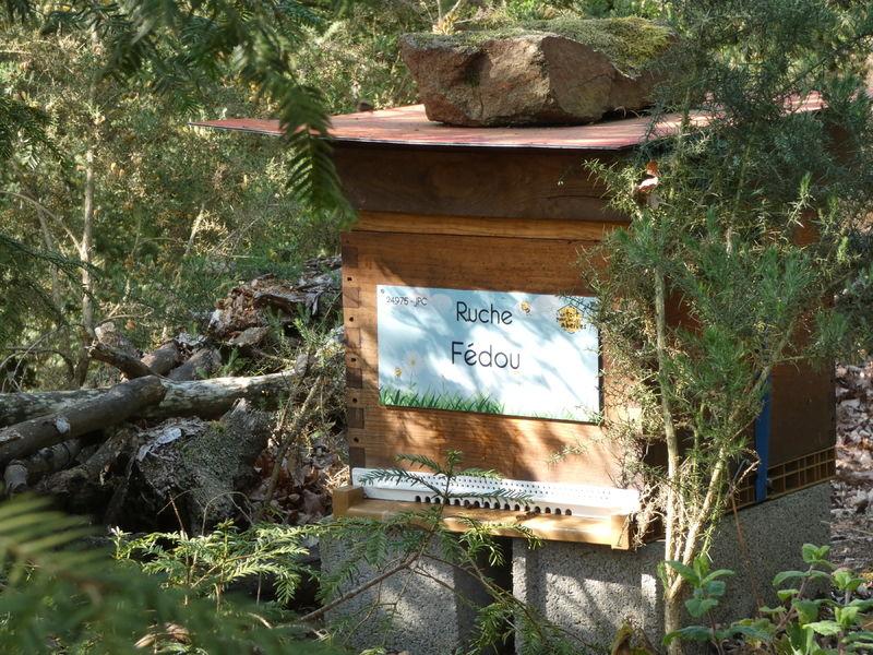 La ruche Fédou
