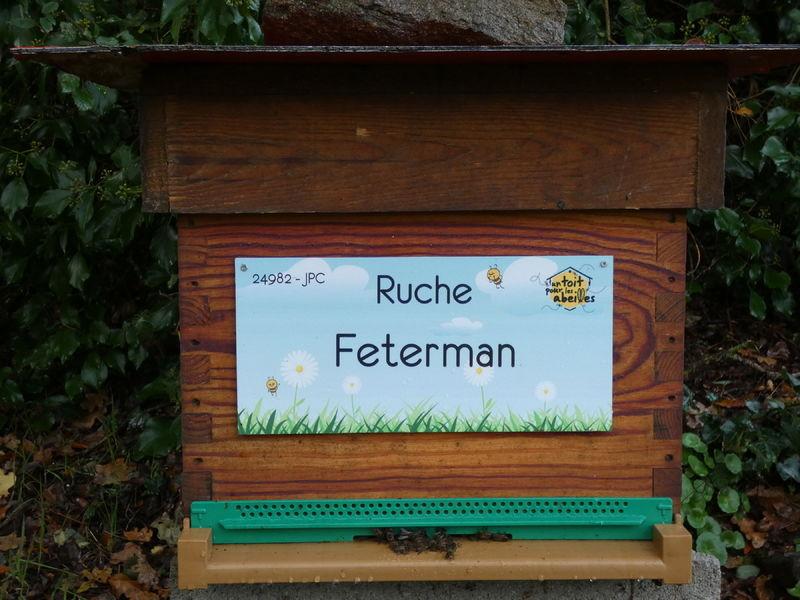 La ruche Feterman