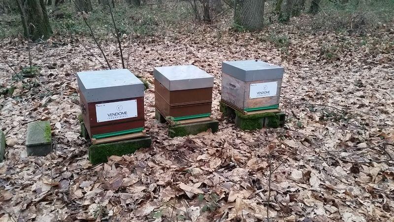 La ruche LABORATOIRES VENDOME