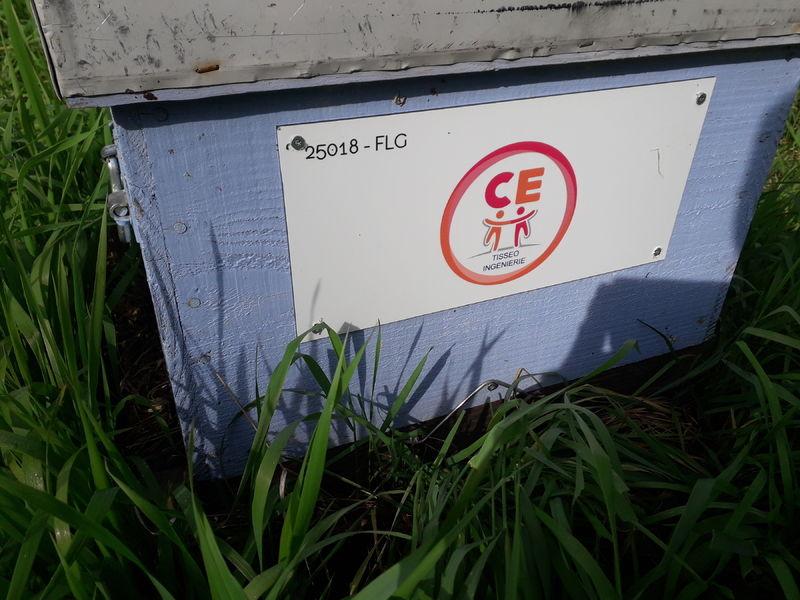 La ruche CSE Tisséo Ingénierie