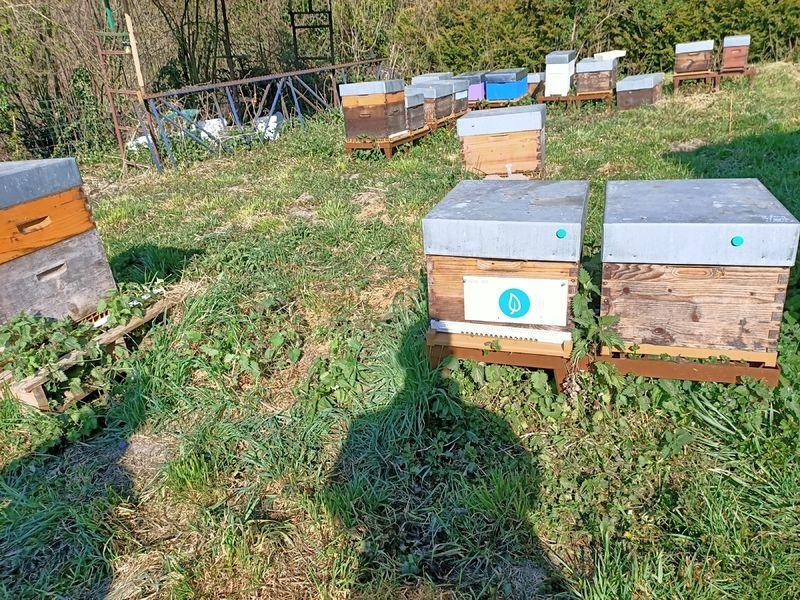 La ruche Giveactions