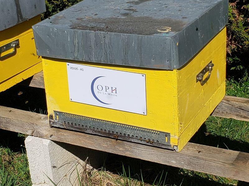 La ruche OPH de la Meuse