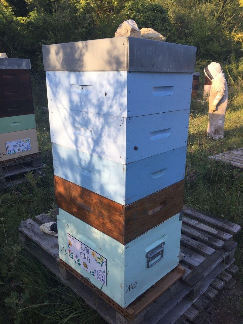 La ruche Genty