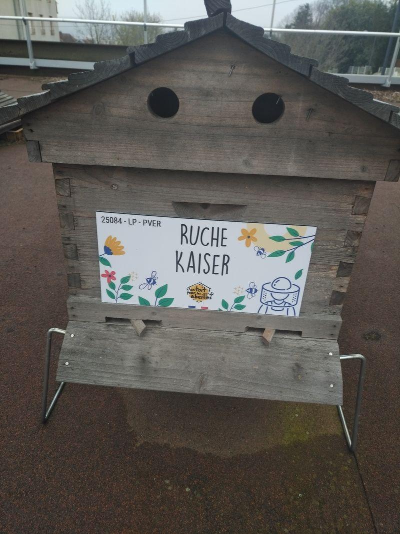 La ruche Kaiser