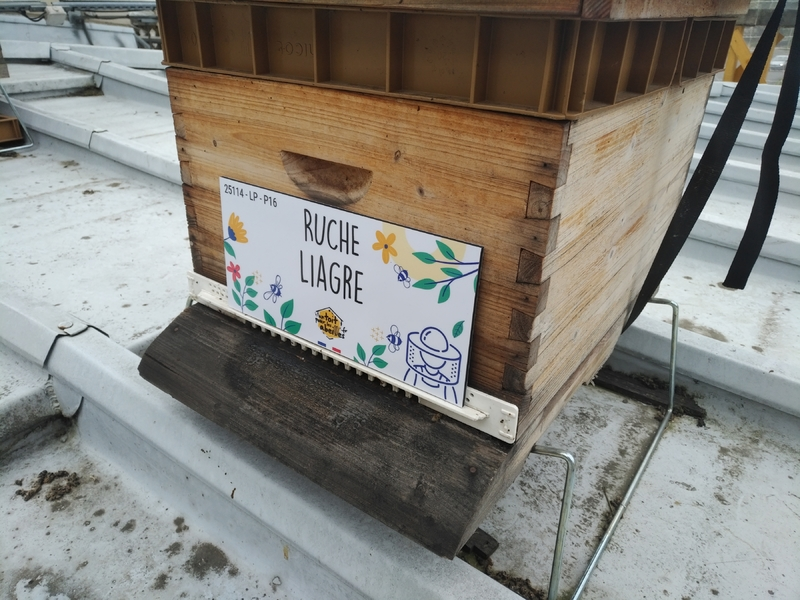La ruche Liagre