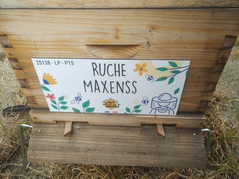 La ruche Maxenss