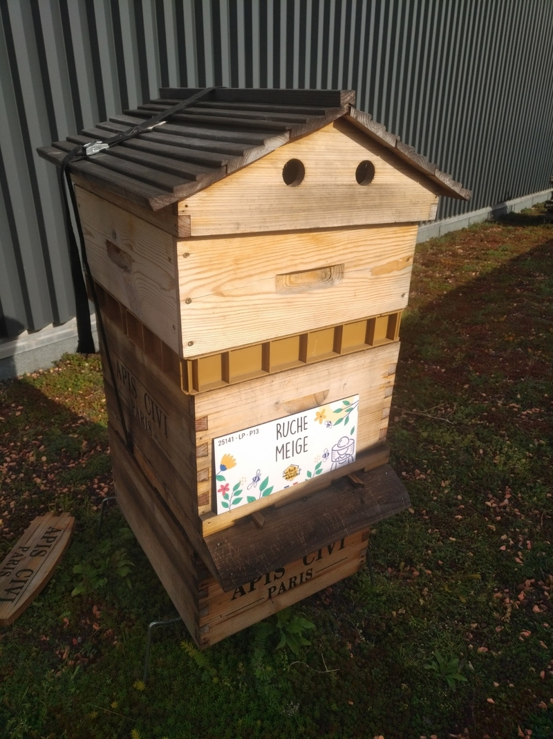 La ruche Meige