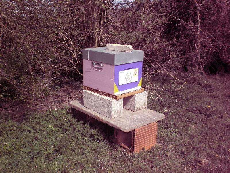 La ruche LA PERDRIERE