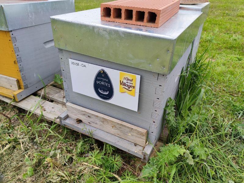 La ruche Domaine de Portes