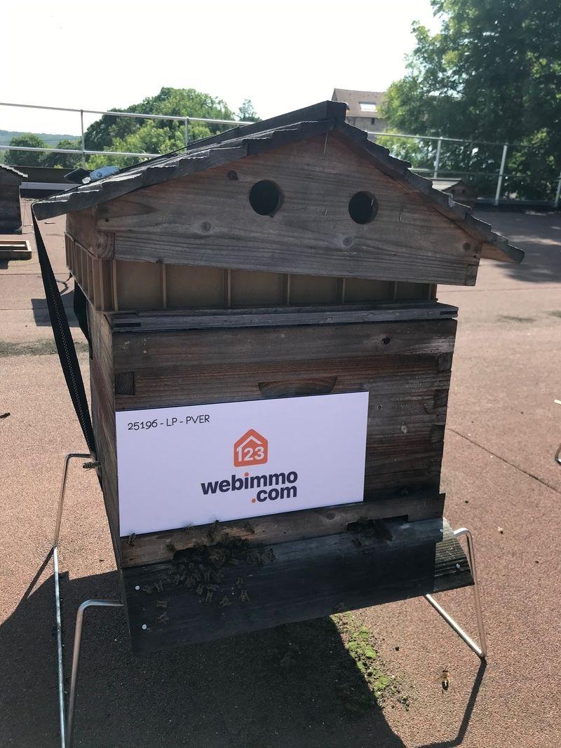 La ruche 123webimmo centre essonne