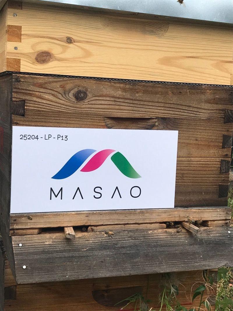 La ruche MASAO
