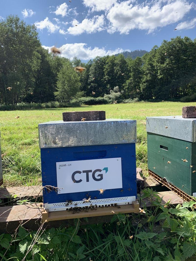 La ruche CTG LUXEMBOURG PSF SA