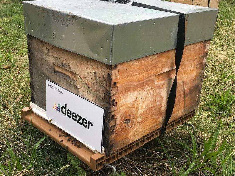La ruche Deezer sa