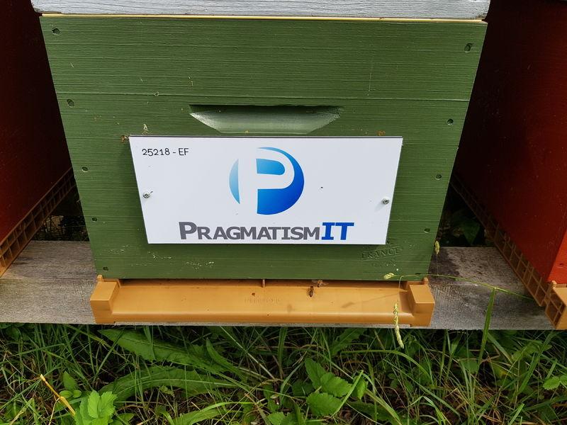 La ruche PRAGMATISM IT