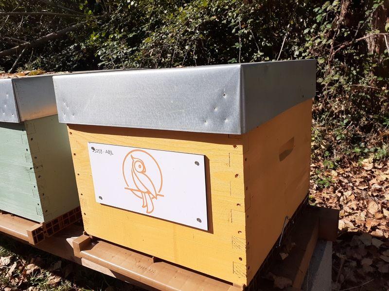 La ruche E-TEAM