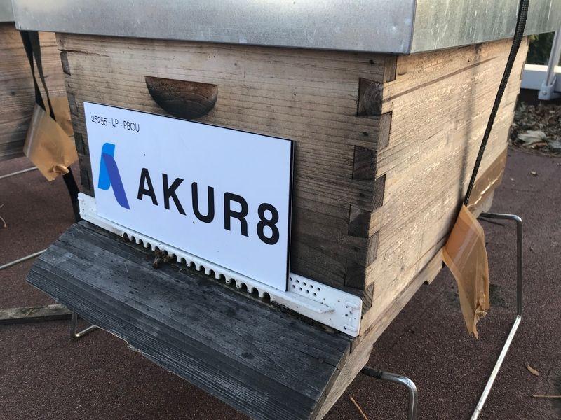 La ruche AKUR8