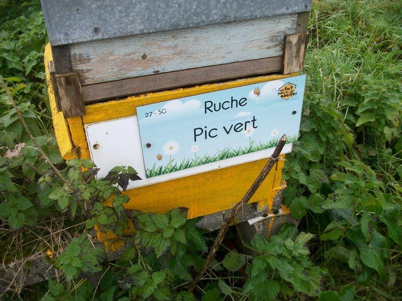 La ruche Pic vert