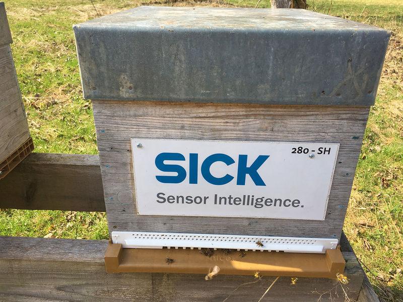 La ruche SICK