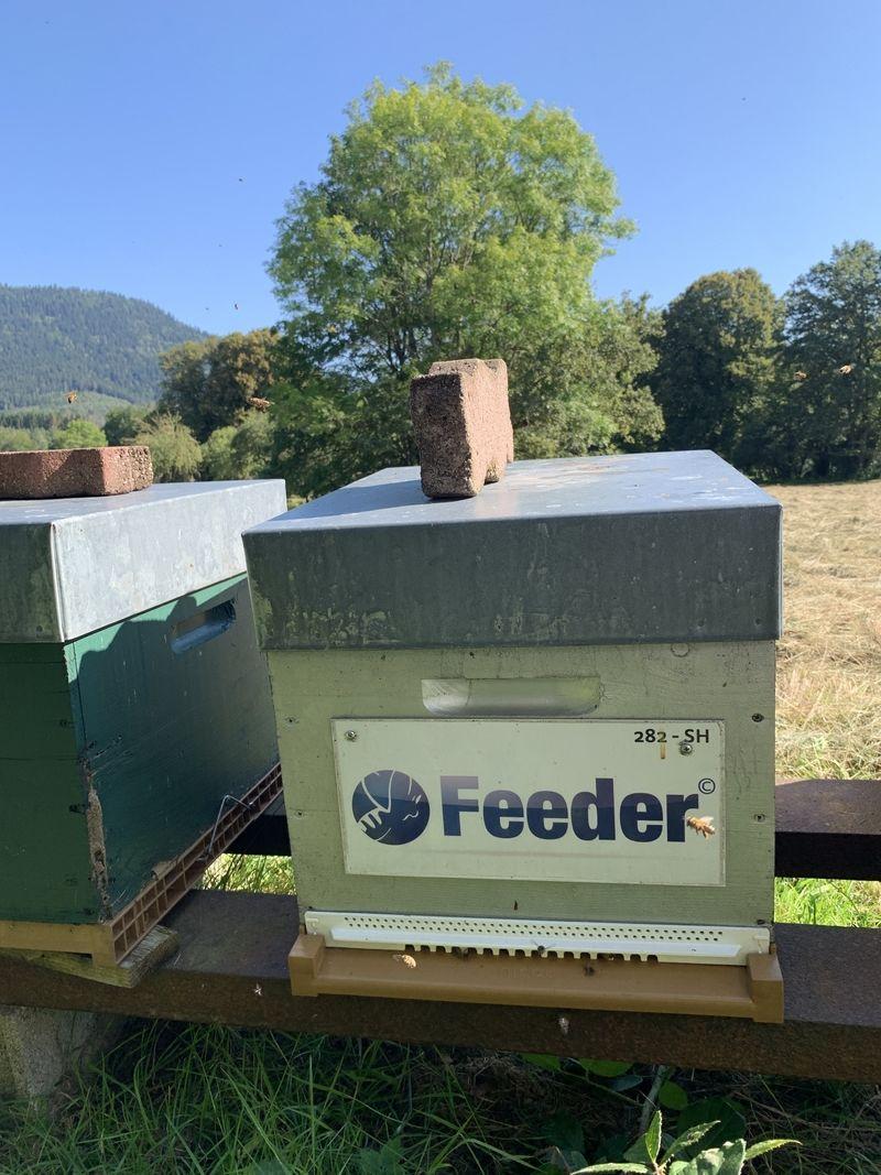 La ruche Feeder