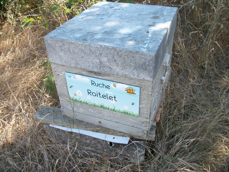 La ruche Roitelet