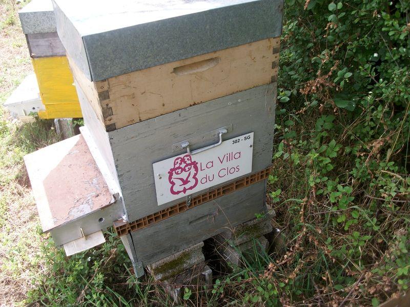La ruche LA VILLA DU CLOS