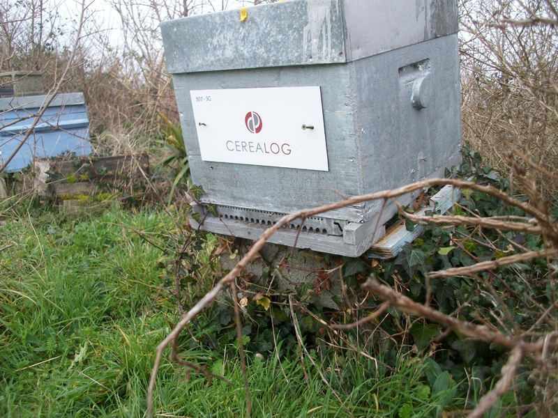 La ruche CEREALOG