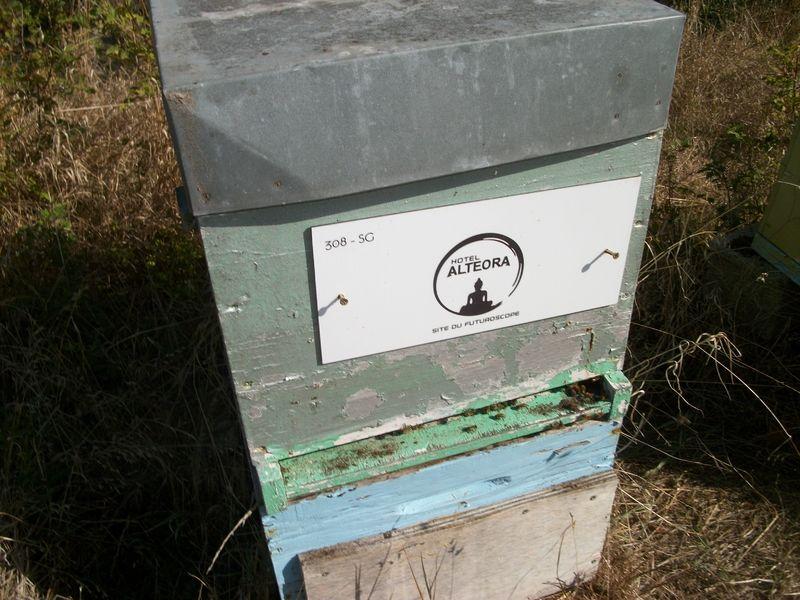 La ruche Hôtel alteora
