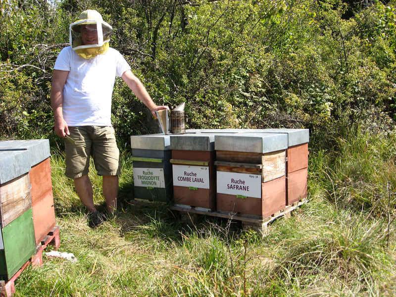 La ruche Combe laval